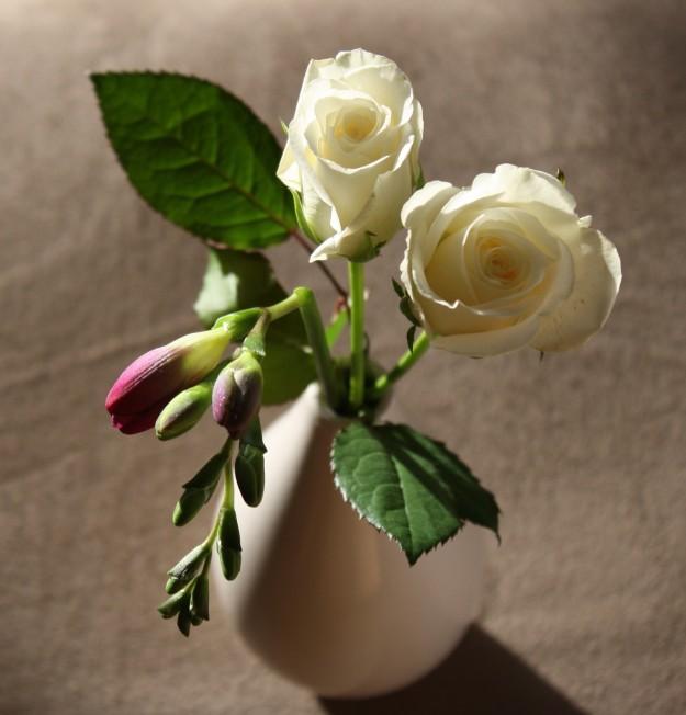 Freesia & white rose
