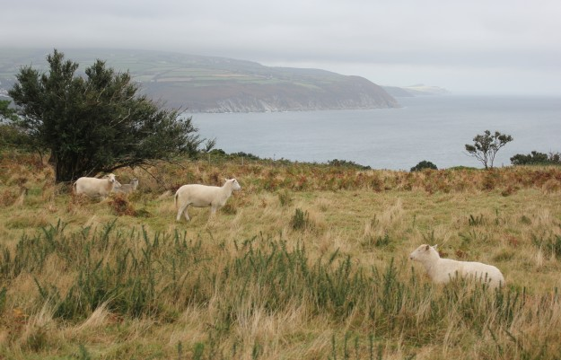 Clay head overlooking Laxey