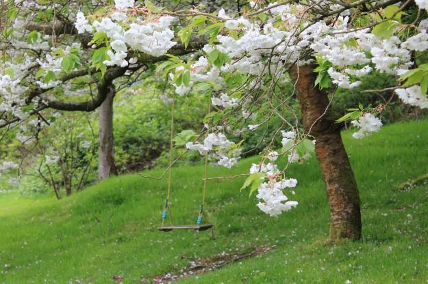 Blossom glen 2